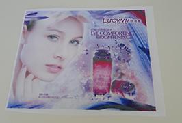 Zastava Tkanina traka štampana na eko otapalu od 1.6m (5 stopa) WER-ES160 4