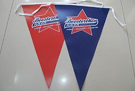 Zastava Tkanina banner štampan na 1.8m (6 stopa) eko otapalnom štampaču WER-ES1801 2