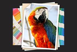 Foto-papir odštampan na štampaču za eko otapalo od 1,8 m (6 stopa) WER-ES1802